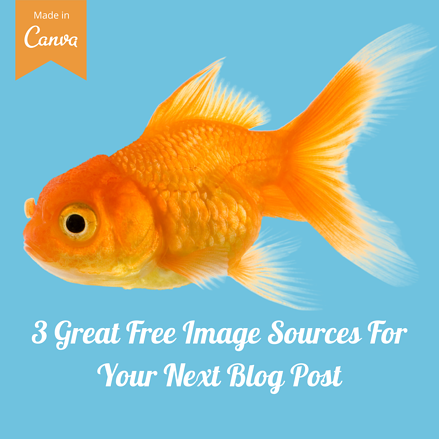 3 Great Free Image Sources For Your Next
