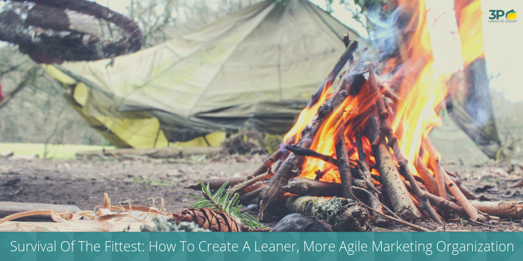 Survival Of The Fittest: How To Create A Leaner, More Agile Marketing Organization
